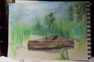 Driftwood-003